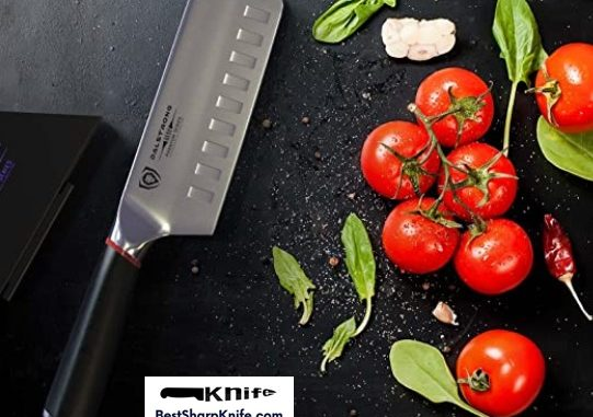 Dalstrong Vegetable knife